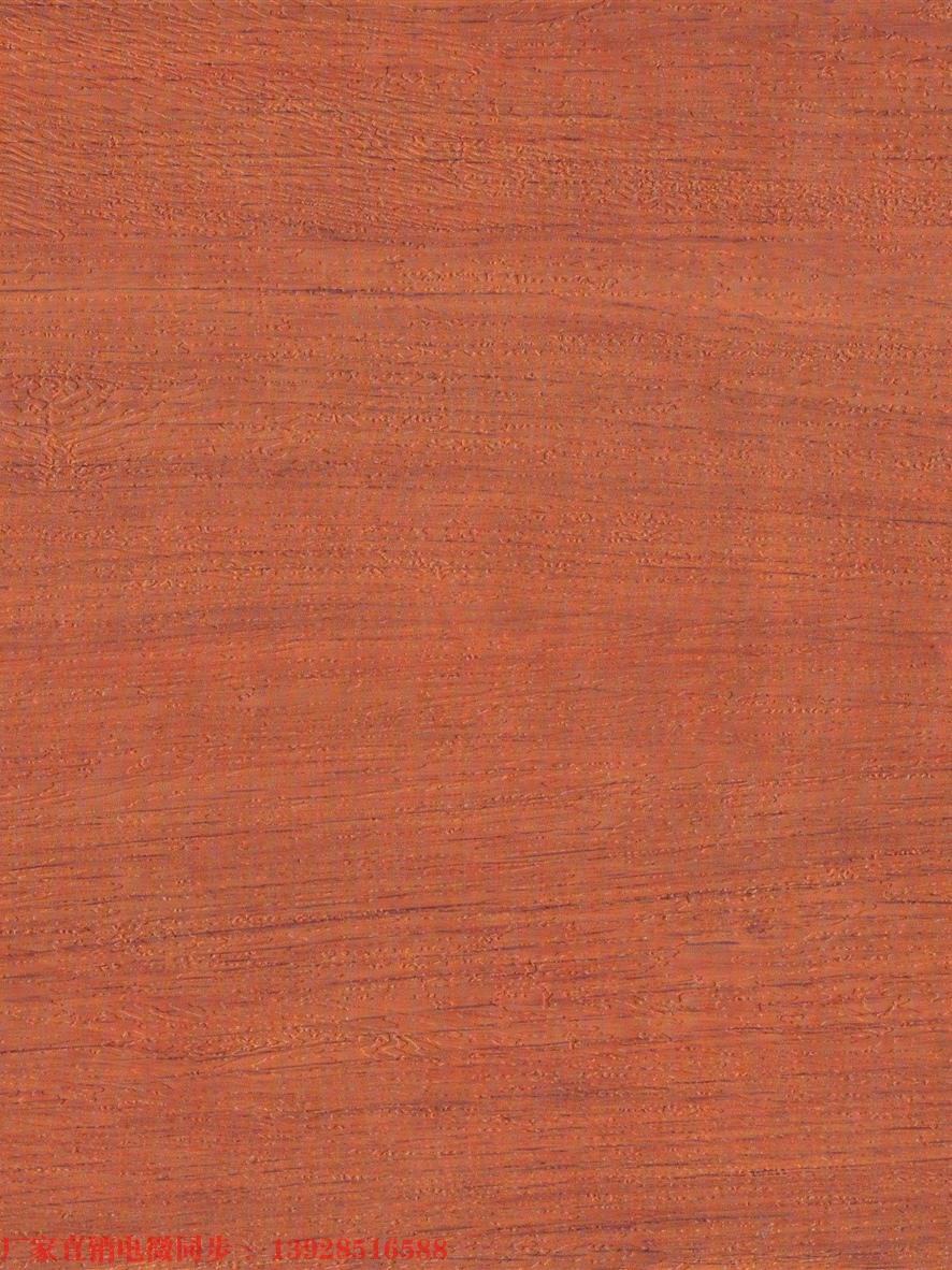 木纹DP021          (红橡木)
